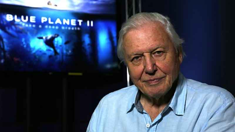 Attenborough to Narrate Netflix Documentary Series
