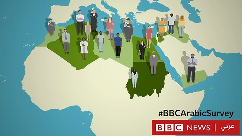 BBC News Arabic Survey Findings Revealed