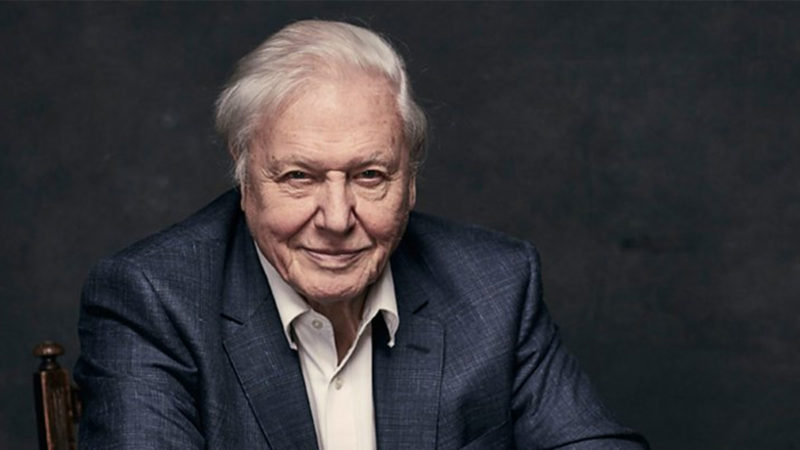 Sir David Attenborough to Present 'A Perfect Planet'